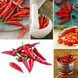 collage of organic hot red chili pepper