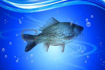 Fishing in deep blue water lake