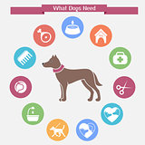 Dog infographics and icon set