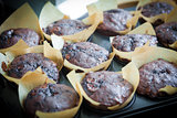 Chocolate muffins with blueberry on cooking pan