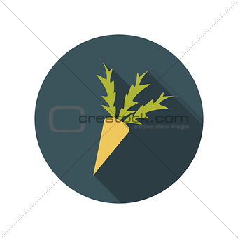 Flat Design Concept Carrot Vector Illustration With Long Shadow.