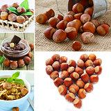 collage hazelnut, chocolate cream and muesli with nuts