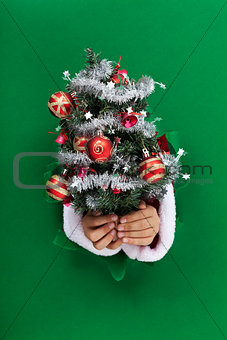 Small christmas tree handed to you