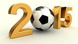 Year 2015 soccer