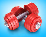 dumbells over white background
