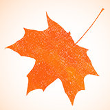 Orange pastel crayon vector autumn maple leaf background