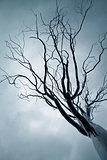 Tree from iron