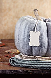 Green Pumpkin with Blank Tag