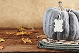 Green Pumpkin with Tag and Copy Space