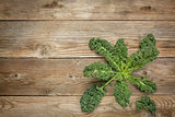 kale leaves on wood
