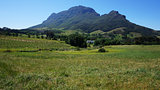 Mountains in Stellenbosch wine region, outside of Cape Town, Sou