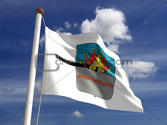 Omsk City flag