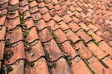 Tiles on a house.