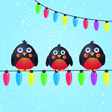 Cute Birds on Wire with Christmas Light Bulbs