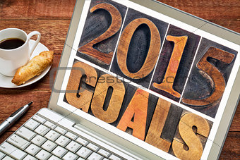 2015 goals in wood type