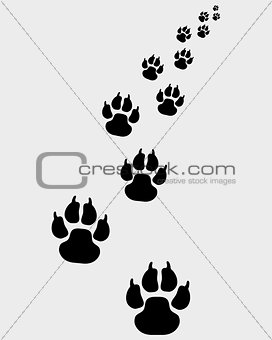 footprints of dogs 2