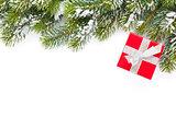 Christmas gift box and snow fir tree
