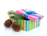 Christmas gift box with fir tree