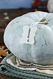 Teal or Blue Colored Pumpkin with Text