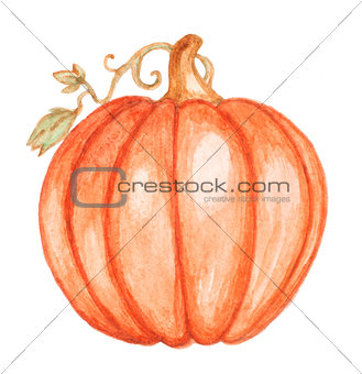 Watercolor orange pumpkin