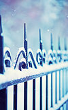 metal decorative fence fragment with tree branches under the snow
