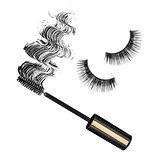 brush for mascara draws smear and false eyelashes. each one is s