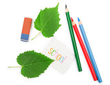 Color pencils with leafs on white background