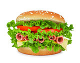 sausage, lettuce, tomato, cheese on the sandwich with sesame see