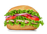 sausage, lettuce, tomato on the sandwich with sesame seeds isola