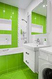 green bathroom interior