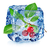 Cherry in ice cube