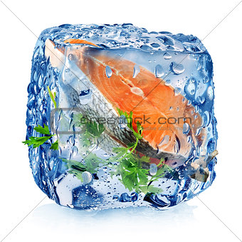 Fish steak in ice cube