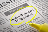 Human Resources IT Specialist Vacancy in Newspaper.
