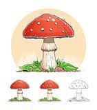 Amanita. Mushroom