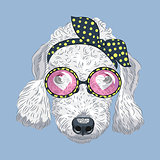 vector funny cartoon hipster dog Bedlington Terrier