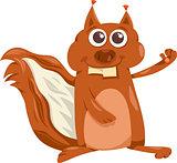 squirrel animal cartoon illustration