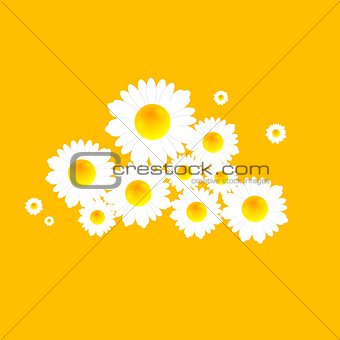 Abstract bright camomiles pattern design
