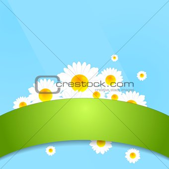 Abstract bright camomiles template design