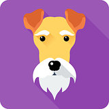 Fox Terrier dog icon flat design