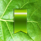 Leaf With Ribbon