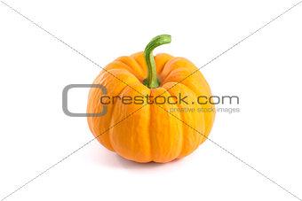 Small decorative orange pumpkin