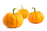 Three decorative orange pumpkins