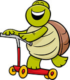 turtle on scooter cartoon illustration