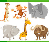 safari animals cartoon set illustration