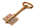 Projects Funding - Golden Key on White Background.