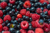 Fresh forest berries