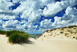Beautiful baltic dunes