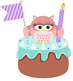 Owl up birthday cake