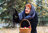Woman with basket of apples in the forest, comes the first snow