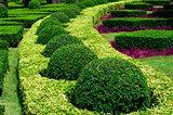 Manicured Garden.